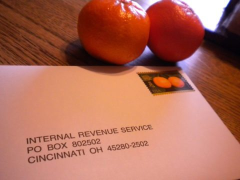 irs audit envelope